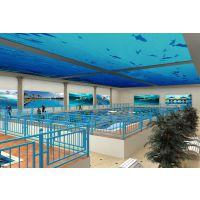 厂家直销拆装式泳池 钢架泳池 可移动式泳池 订制非标准泳池 YC-18