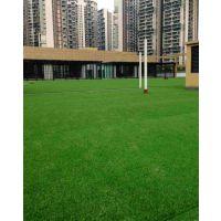 人造草坪幼儿园草坪施工人造草坪安装