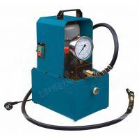中西 液压机动泵 库号:M405947 型号:DL21-A
