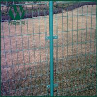 厂家直销 防护网 喷塑养殖防护网 绿色铁丝防护网