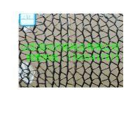 厂家直销遮阳网 防晒网 黑色遮阳网 抗老化隔热网