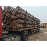 广东省珠海市进口铁杉批发厂家 进口木方批发厂家 工地方条批发厂家