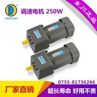东川微型交流齿轮减速电机220V调速电机250W
