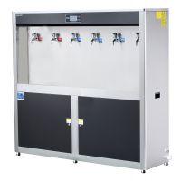 高端柜式节能温热饮水机系列BT-6G
