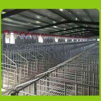 母猪料线 自动喂料料线 塞盘链条 整体设计安装一条龙服务到位