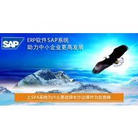 湖南SAP代理商 湖南SAP B1供应商及实施商选择长沙达策