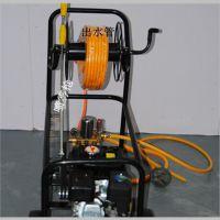 高射程打药机价格 果园除虫烟雾器规格 厂家直销脉冲式弥雾机