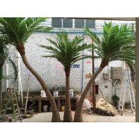 广州松涛仿真椰子树假椰树 玻璃钢大型椰子树 人造景观树