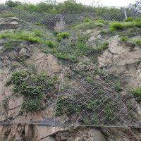 护山网生产商_护山边坡防护网厂家_钢丝护山防护网