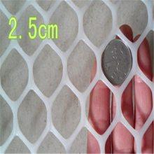 塑料防护网 席梦思床垫 塑料筛分网