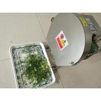 灵芝三七药材切片机 660型鲜辣椒韭菜切段机 山东思路批发多型号果蔬加工设备