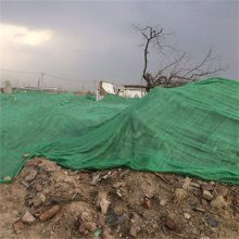 三针盖土网现货 绿色抑尘网 环保盖土网