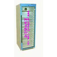 中西(DYP)恒温柜/恒温箱 型号:FY12/YS-430L库号:M402047