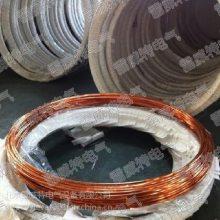 直径D22*2.5M D25*2.5M铜覆钢接地棒,铜包钢接地圆线 防雷避雷产品