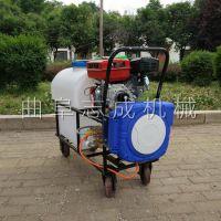 志成生产高压汽油推车式打药机自动缠管苗圃杀虫喷药器大棚农药喷洒机
