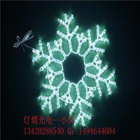 LED造型灯型号DY-106 灯光节图案灯 节日装饰灯串 LED景观灯