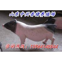 http://himg.china.cn/1/4_629_235764_600_400.jpg