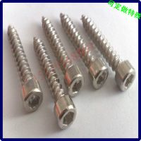 不锈钢内六角自攻螺钉 圆柱头自攻螺丝钉 生产定做加工江门螺钉厂