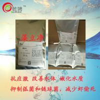 徐州乾骋藻立净水产解决1号 改善水体环境