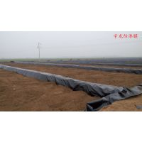 汝阳养殖场沼气池黑塑料膜鱼塘藕池黑膜设计方案HDPE膜厂家价格