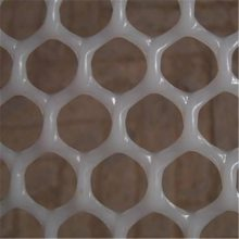 排水塑料平网 养蜂塑料网 鸡鸭垫底网