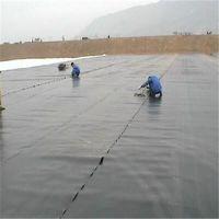 蓄水池铺什么样的材料比较好——山东蓄水池防渗膜
