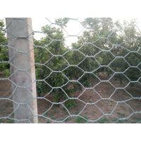 现货供应高尔凡丝石笼网 石笼网箱护堤网