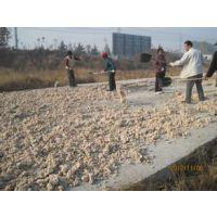 金宝贝红薯饲料发酵剂,发酵红薯,北京华夏康源科技有限公司,每包20件