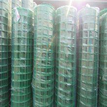 PVC电焊荷兰网 鹿园隔离网 家禽防护网