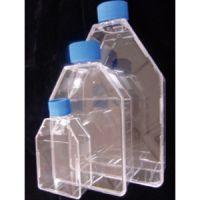 LabServ 25cm2细胞培养瓶
