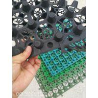 山东塑料排水板东泰建材公司提供15550813655
