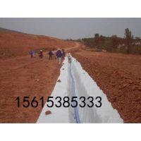 http://himg.china.cn/1/4_634_235720_422_316.jpg