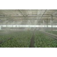 食用菌种植大棚加湿控湿设备_超声波加湿设备_徳合信人造雾