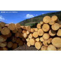 越南木材相关单证可以办理进口清关吗