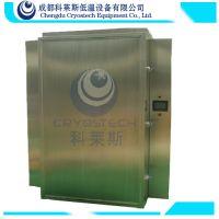小批量食品速冻设备/柜式液氮速冻机/海鲜/包子速冻
