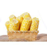 连续式玉米盒式保鲜气调包装机