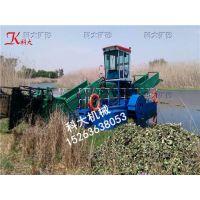 清理水库水草、水下水草收割机、全自动割草船价格