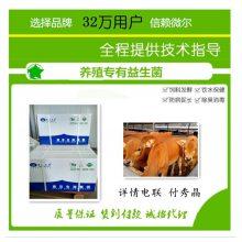 养牛益生菌厂家分享养牛用益生菌的好处