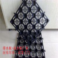 郑州PE排蓄水板厂家供应