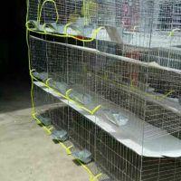 衡水兔笼厂家@飞创兔子笼【兔笼配件】等一站式采购 非常方便