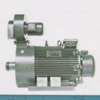 供应江特YZPB(F)280M-6-75KW系列用冶金电机及变频调速起重