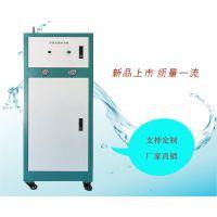 医用超纯水机 小型纯水机益宇 小型超纯水生产设备 可定制