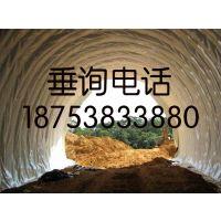 http://himg.china.cn/1/4_639_236470_595_443.jpg