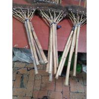 金竹牌棕扫帚,天然的植物的,工业品无法相比的,。高贵品质,高档享受。
