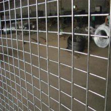 养殖用电焊网 电焊网型号 镀锌网片