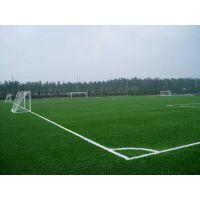 贵州足球场地工程施工, 贵州商家供应足球场地设施施工