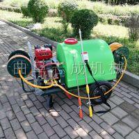 志成汽油推车打药机果树拉管式喷药机大功率农用杀虫喷雾器