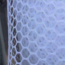 白塑料养鸡网 塑料平网生产厂家 养殖专用围网