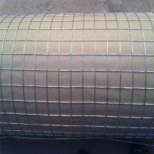 热镀锌电焊网养兔子喷塑电焊网 养殖围栏网