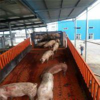 山东厂家直销3吨液压升降台固定式卸猪台 生猪装卸车设备 养殖场装卸平台